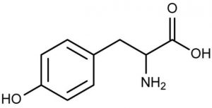 Tyrosine natuurkundige samenstelling