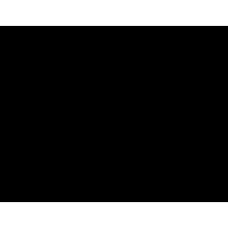 balansvoer icon