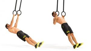 gym rings reverse row