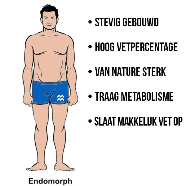 kenmerken endomorf lichaamstype